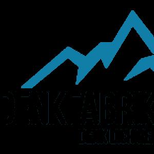 denkfabrik's Company logo